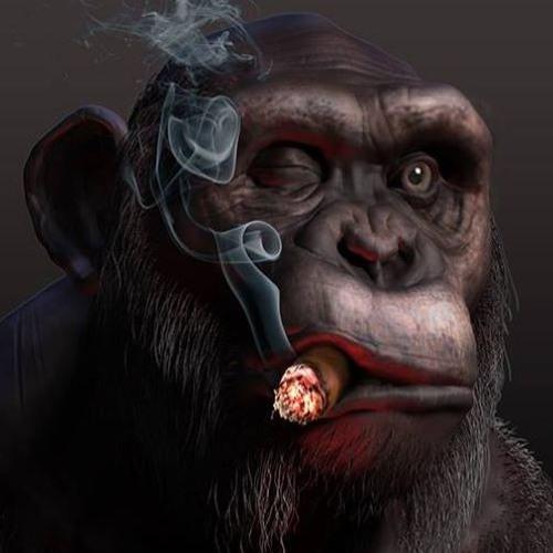 da Winzi's avatar
