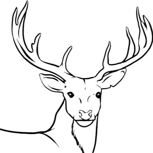 SIX DEERS's avatar