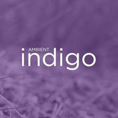 Ambient Indigo