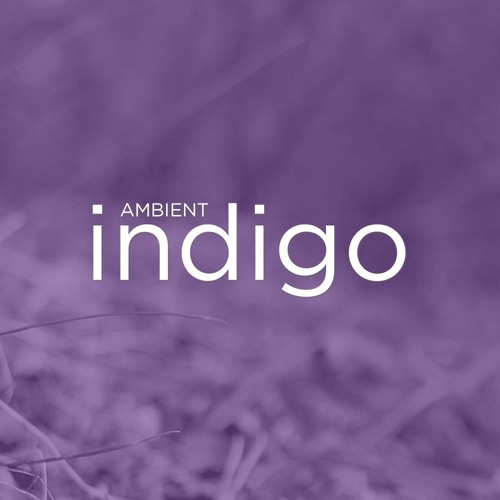 Ambient Indigo's avatar