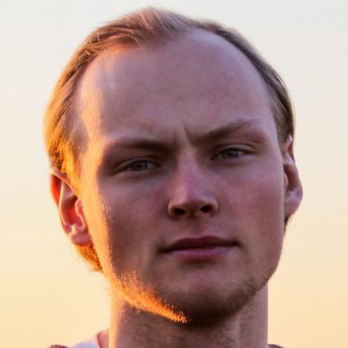 Niels Scholtes's avatar