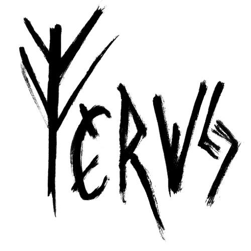 FERVS's avatar