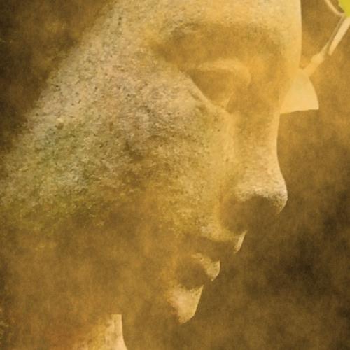 Lotka Volterra's avatar