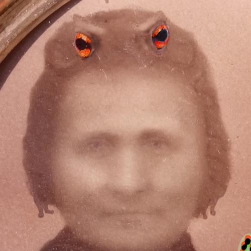 Kröter's avatar