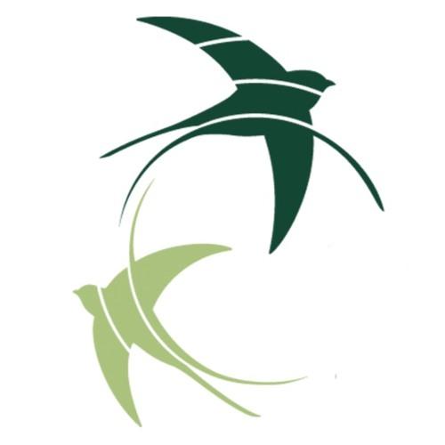 Fondation Hirondelle RDC's avatar