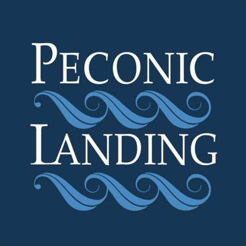 Peconic Landing Art Without Barriers's avatar