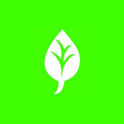 Chlorophyll's avatar