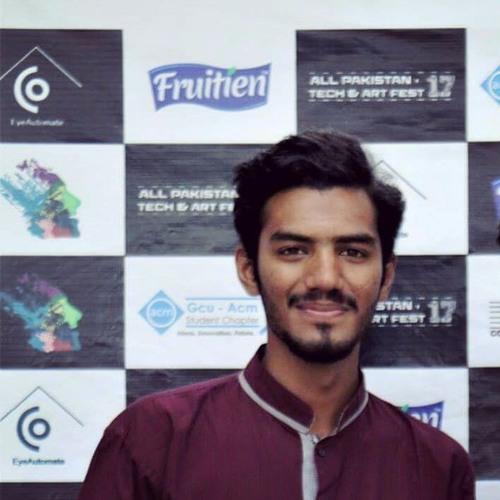 Ali Ansari's avatar