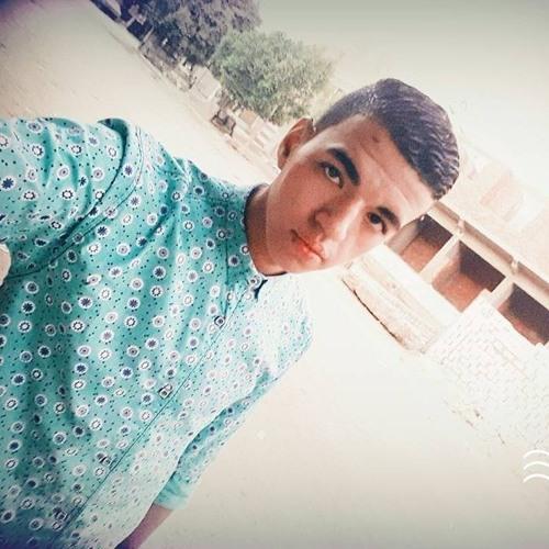 Tarek Abd Elbaky's avatar