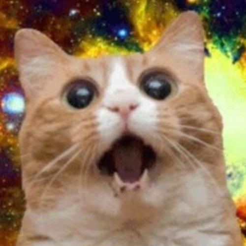 Alex The Cat's avatar