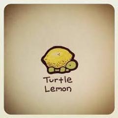 LEMON.TURTLE