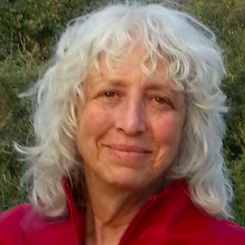 Susan Devor Cogan's avatar
