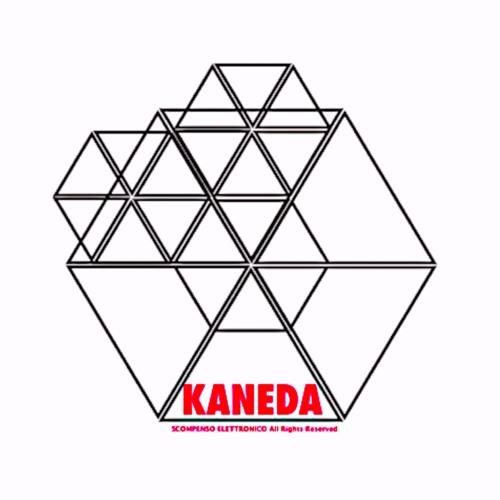 KANEDA PROJECT's avatar