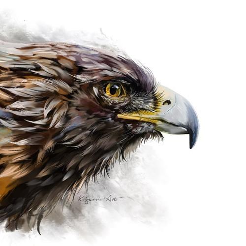 vlmus's avatar