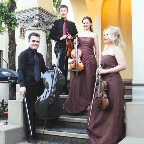 Cvartetul Fiore's avatar