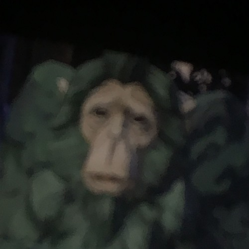 TDG Marciano's avatar