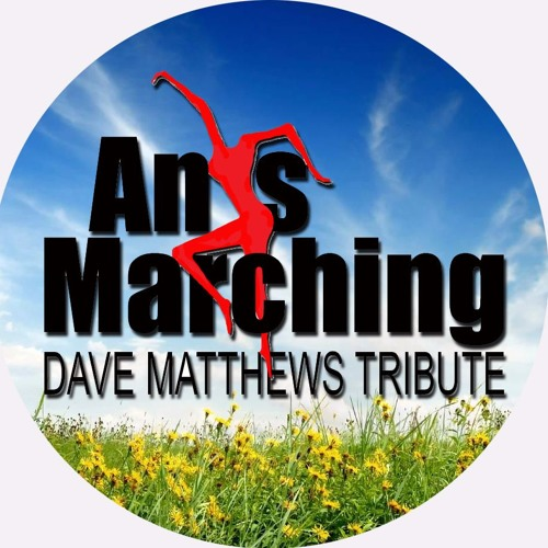 Ants Marching - Dave Matthews Tribute Band's avatar