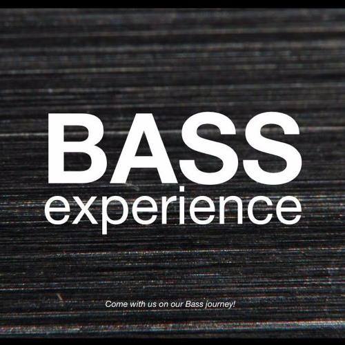Bass Experience's avatar