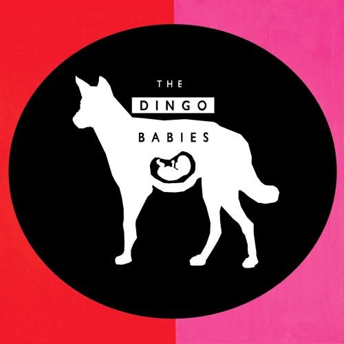The Dingo Babies's avatar
