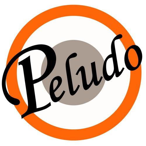 Señor Peludo's avatar