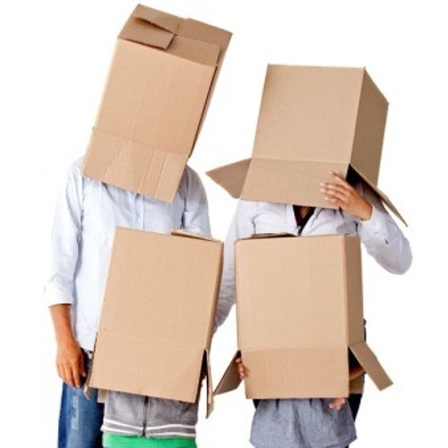 Cardboard Boys's avatar