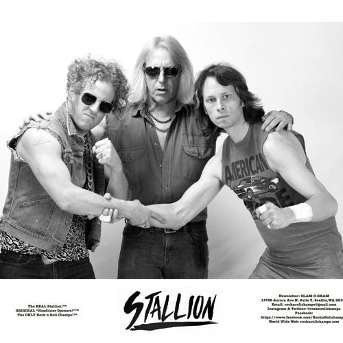 Stallion Band's avatar