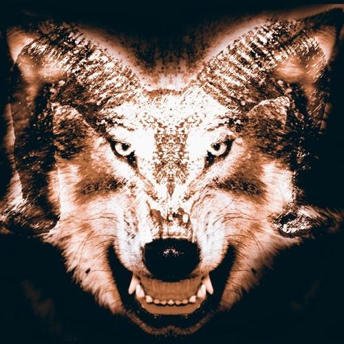 DEADWOLF's avatar