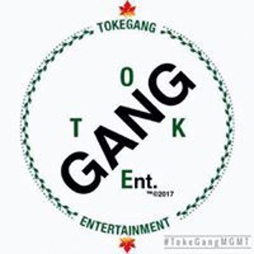 Toke Gang's avatar