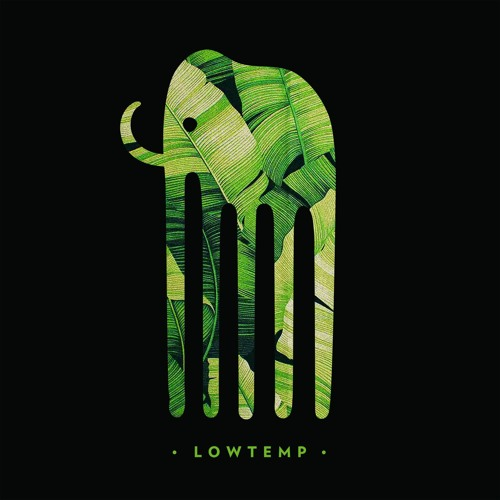 Lowtemp Music's avatar
