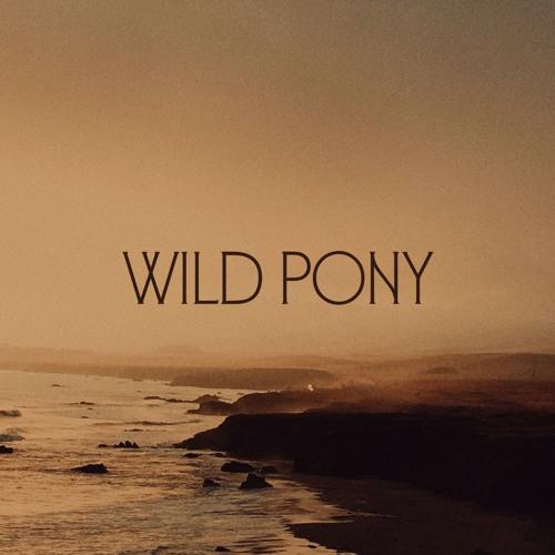 Wild Pony's avatar