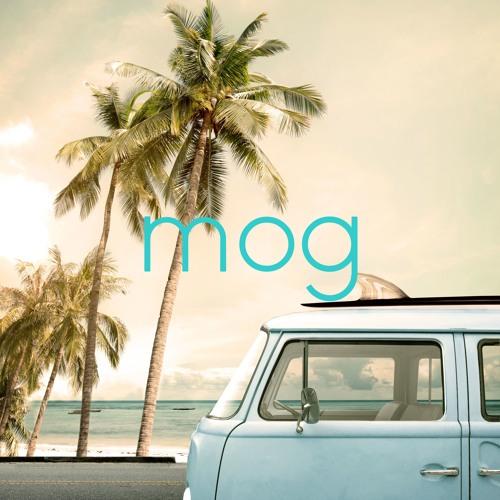 mog 🌴's avatar