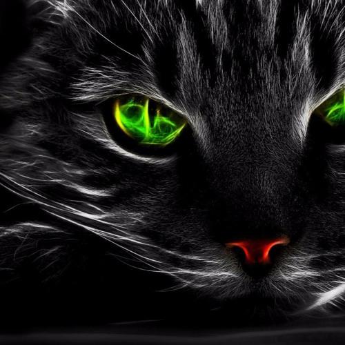 Black Cat's avatar