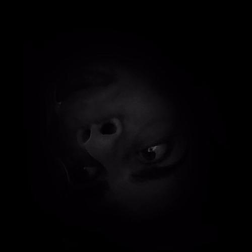 gvibe's avatar