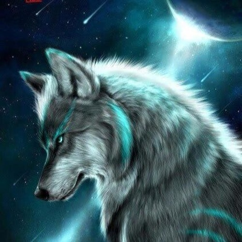 LucaSilveira's avatar