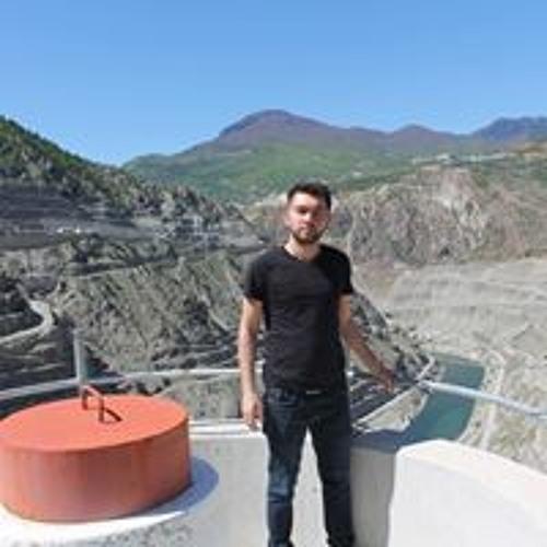 Rıdvan Çetinkaya's avatar
