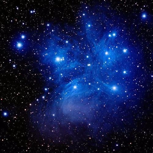 Letitia Pleiades's avatar