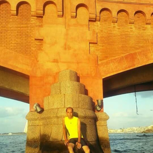 محمد حامد 01152213078's avatar