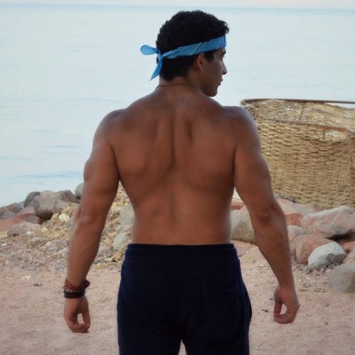 Omar mohsen's avatar