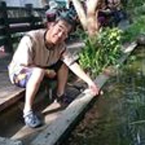 Vincent Lu's avatar
