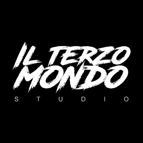 Il Terzo Mondo Studio's avatar