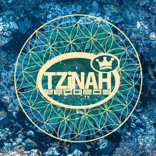 Tzinah Records's avatar