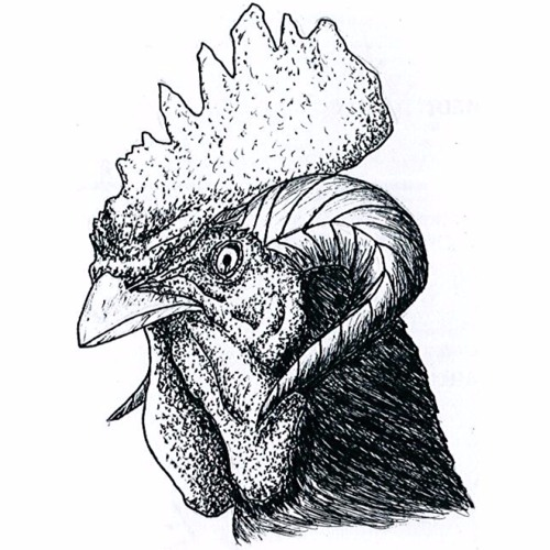 Cartagena Federal's avatar