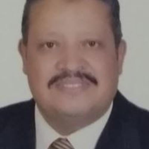 Sayed Ibrahem's avatar