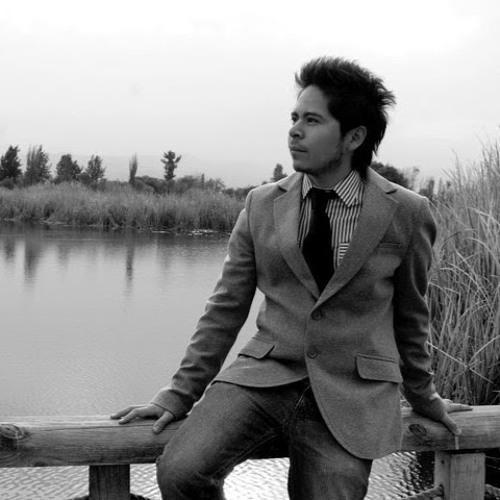 Diego Peralta, Blogger (diegoperaltanet)'s avatar