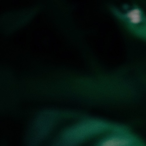 Proda's avatar