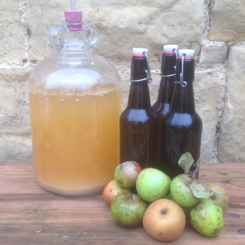 Cider, apples, local shopping**