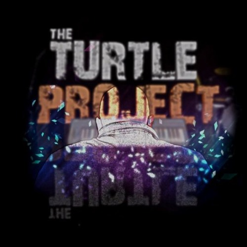 the turtle project's avatar