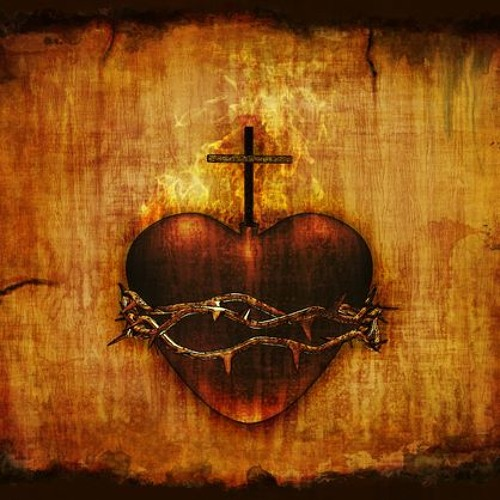Sacred Heart LaPlata's avatar