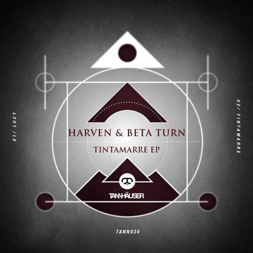 Tannhäuser Recordings's avatar