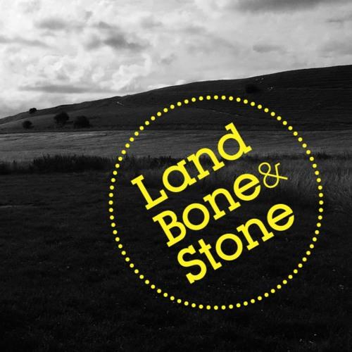 Land Bone & Stone Poetry Parks's avatar